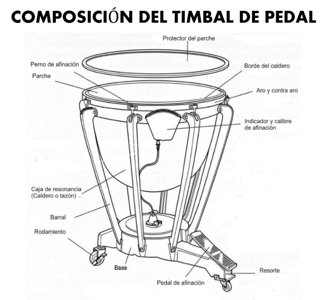 composicion del timbal