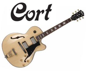 Las mejores guitarra eléctricas Hollow