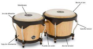 Los mejores bongó partes de un bongó