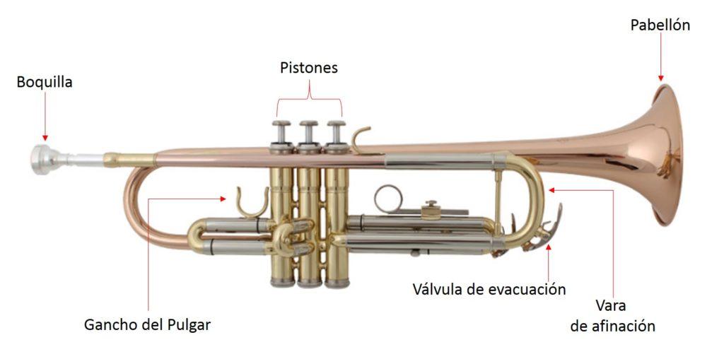 Las mejores trompetas y sus partes, componentes de una trompeta.